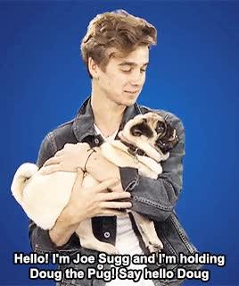 Watch and share Joe Sugg GIFs on Gfycat