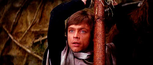 Watch Ewoks suck at a lot of things and that's not always an insult apparently. | 17 Ways Star Wars Is Basically Erotica Out Of Context GIF on Gfycat. Discover more related GIFs on Gfycat