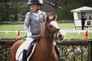 Watch and share Show Jumping GIFs and Equestrian GIFs on Gfycat