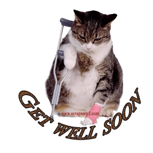 Watch and share Get Well Soon animated stickers on Gfycat