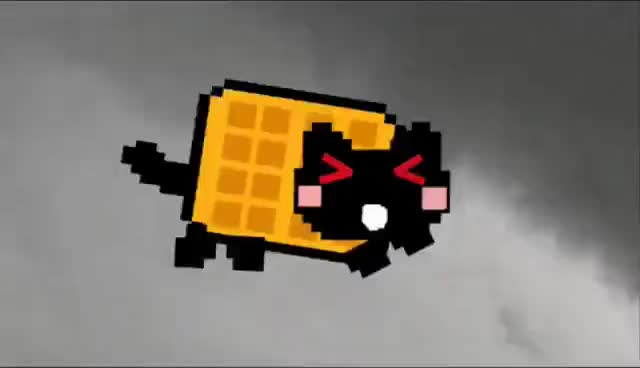 nyan cat, Nyan cat vs tac nyan GIFs
