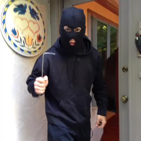 Watch #howto not commit a robbery on a house with a vicious guard dog. #Loop #comedy #dog #funny GIF by Zerguine Halim (@zerguinehalim) on Gfycat. Discover more related GIFs on Gfycat