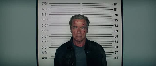 Watch and share Arnie GIFs by felixlapoubelle on Gfycat