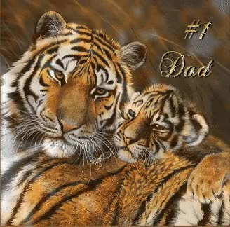 Watch and share #1 Dad Tiger Graphic GIFs on Gfycat