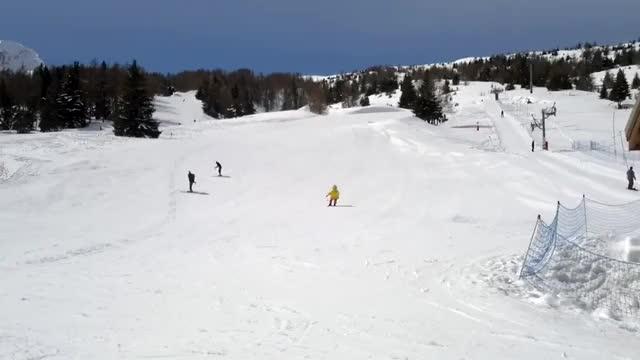 Watch and share Big Bird Skiing GIFs on Gfycat