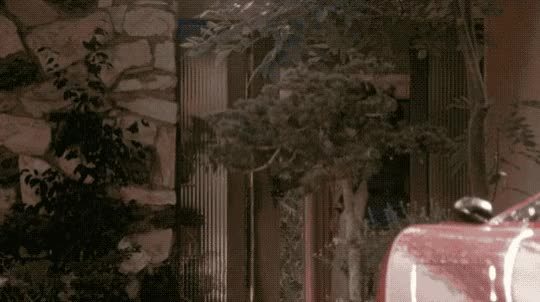 Watch Our favorite car! Starship Eros (small version) GIF by Beyond the Beaded Curtain (@dirtyvhs) on Gfycat. Discover more classic car, dirtyvhs, starship eros, vintage porn GIFs on Gfycat