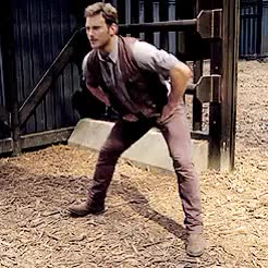 "Watch ""Come on, Y/N! This is hilarious!"" GIF on Gfycat. Discover more jurassic world, jurassic world imagine, not my gif, owen grady, owen grady imagine GIFs on Gfycat"