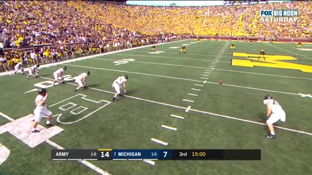 Watch and share Football GIFs and Michigan GIFs by handlit33-cfb on Gfycat