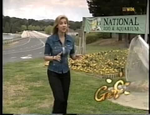 Canberra, capuchin, getaway, leopard, tigon, Getaway November 2001 GIFs