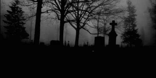 Watch and share Graveyard GIFs on Gfycat