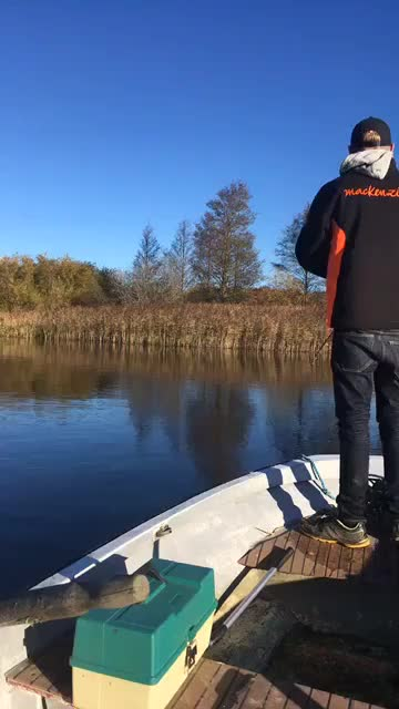 Watch and share Fishing GIFs and Sweden GIFs on Gfycat