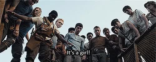 Watch and share The Maze Runner GIFs on Gfycat