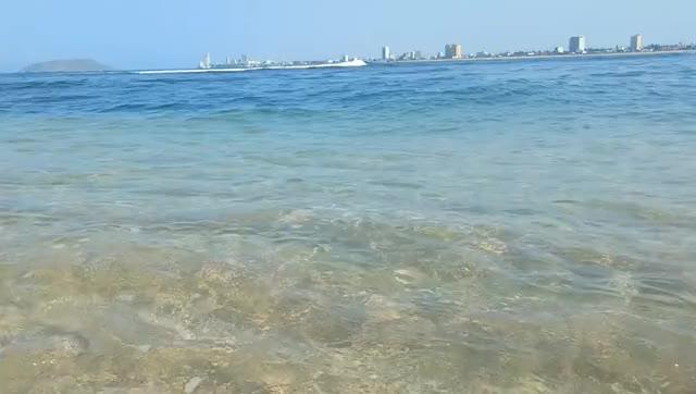 Watch and share Mazatlan GIFs and Sinaloa GIFs by Ibis López on Gfycat