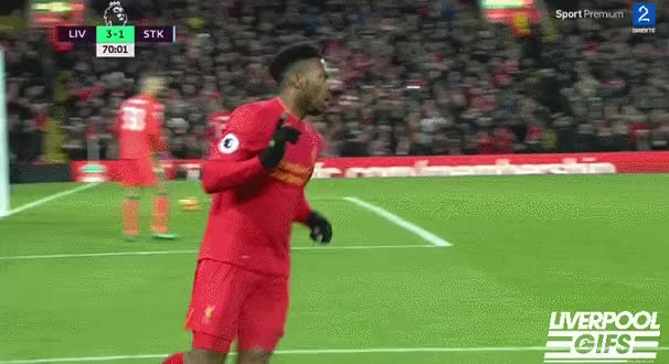 Watch Liverpool Gifs - #DoTheStudge GIF on Gfycat. Discover more liverpoolfc GIFs on Gfycat