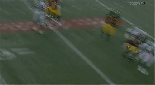 Watch and share Tim Hortons Field GIFs and Delvin Breaux GIFs by Archley on Gfycat