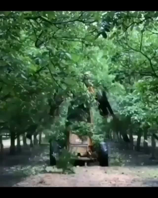 Watch and share Tree Trimmer GIFs and Machine GIFs on Gfycat