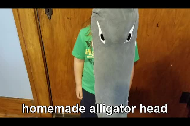 Watch this alligator GIF on Gfycat. Discover more alligator, costume, funny, gator, gifs GIFs on Gfycat