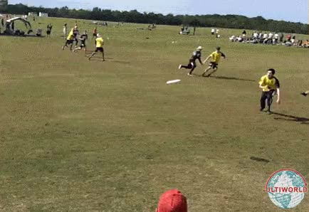 Watch american-ultimate-disc-league GIF on Gfycat. Discover more related GIFs on Gfycat