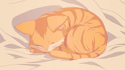 bedtime, catgirl, goodnight, kittengirl, kitty, neko girl, sleeptight, sleepy, Anime sleep GIFs
