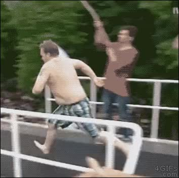 Watch Belly Flop GIF on Gfycat. Discover more related GIFs on Gfycat