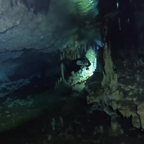 bealive, bigbluedivelights, cavediving, diving, experience, feel, findintulum, gopro, instascuba, instatulum, live, mexico, protectulum, scuba, scubadiving, scubagram, see, travel, tulum, tulumgram, The Mayan Blue magiK The haloc makes the pic unsharp. Mix salt and fresh water in a structure... GIFs