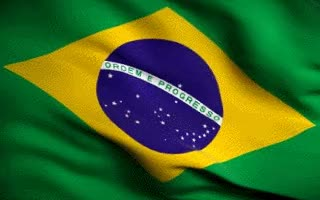Watch and share Brazil Flag Animated Gif GIFs on Gfycat