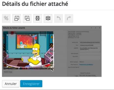 Watch crop GIF on Gfycat. Discover more crop, image, wordpress GIFs on Gfycat