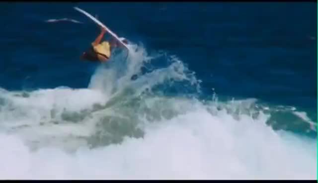 newcastle, surfing GIFs