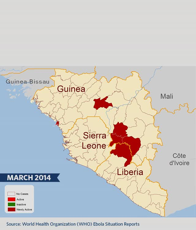 Watch and share 🇸🇱 — Sierra Leone GIFs on Gfycat