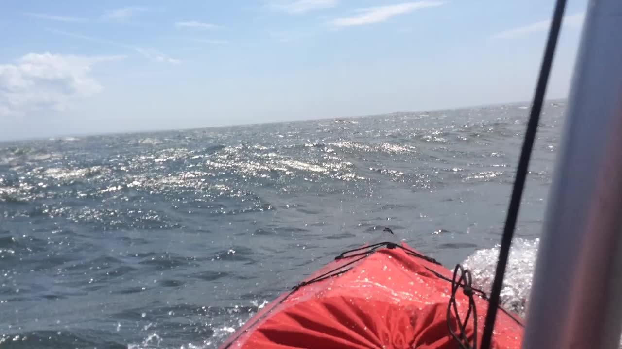 kayaking, My pride and joy: a folding tandem sailing kayak. (reddit) GIFs
