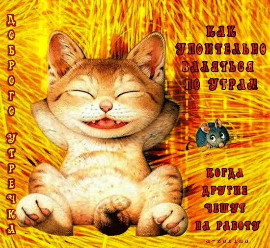 Watch and share Доброго Утречка! GIFs on Gfycat