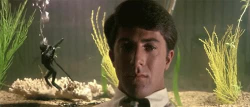 Watch and share The Graduate GIFs on Gfycat