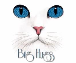 Watch and share Virtual Hugs GIFs on Gfycat