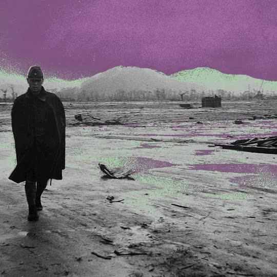 Watch and share Purple GIFs on Gfycat