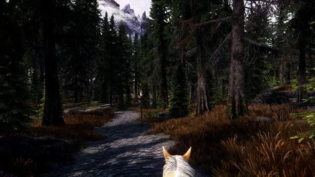 Watch Skyrim - Silent Skies ENB GIF by @drbeavi5 on Gfycat. Discover more skyrim, tes, tesv, videogame, videogames GIFs on Gfycat