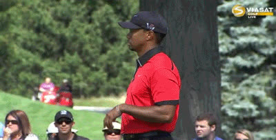 tiger woods, tiger woods GIFs