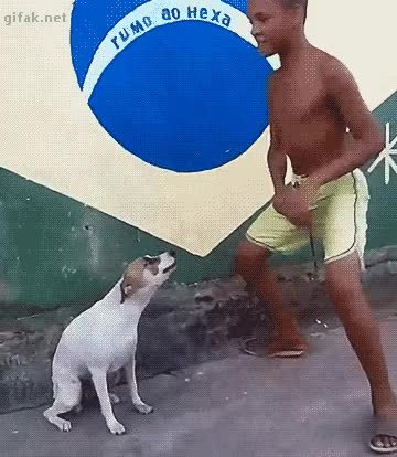 Watch cachorro e menino.gif GIF by Streamlabs (@streamlabs-upload) on Gfycat. Discover more related GIFs on Gfycat