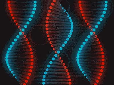 Watch and share DNA Double Helix Rotating Animation Gif GIFs on Gfycat