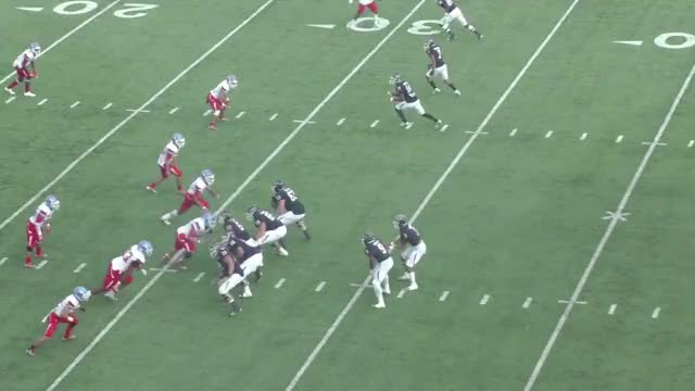 Watch and share Gabriel Brooks GIFs and Football GIFs by Pistols Firing on Gfycat