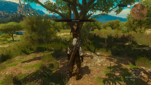 Watch and share The Witcher 3 GIFs by hexciple on Gfycat