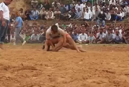 Watch and share Men Vs Women : Divya Sain Defeats A Male Opponent Two Times, Himachal Pardesh. GIFs on Gfycat