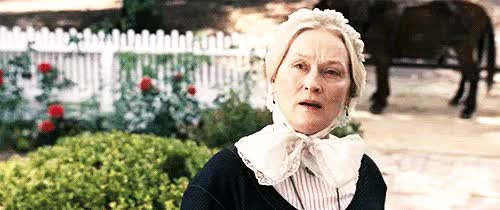 Watch this GIF on Gfycat. Discover more celebs, meryl streep GIFs on Gfycat