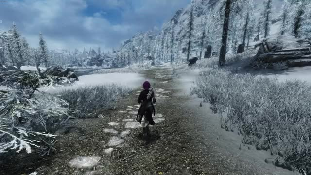 Watch and share The Elder Scrolls V Skyrim Special Edition 2020.05.12 - 03.08.30.03 GIFs on Gfycat
