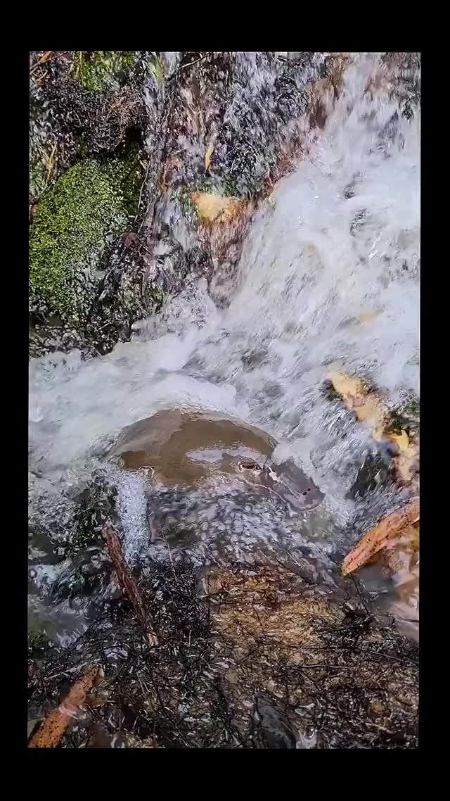 Watch and share Waterfall GIFs and Platypus GIFs by wotanii on Gfycat