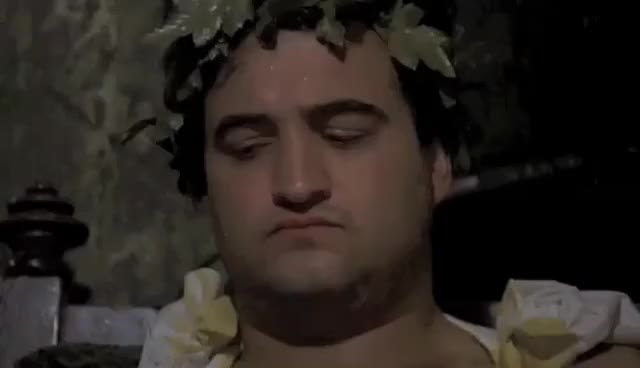 Watch iMovie ReTrailers - Animal House GIF on Gfycat. Discover more related GIFs on Gfycat