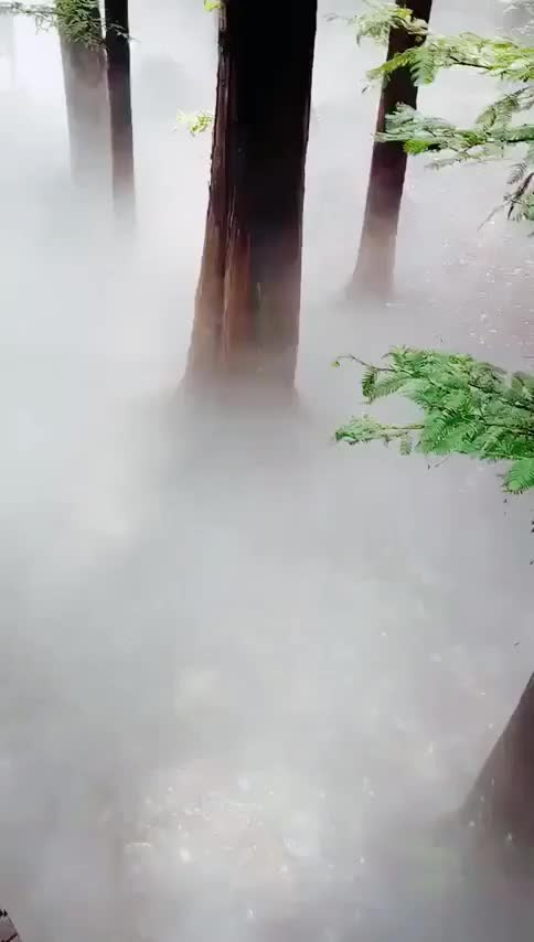 Watch and share Nature GIFs by GifWorld on Gfycat