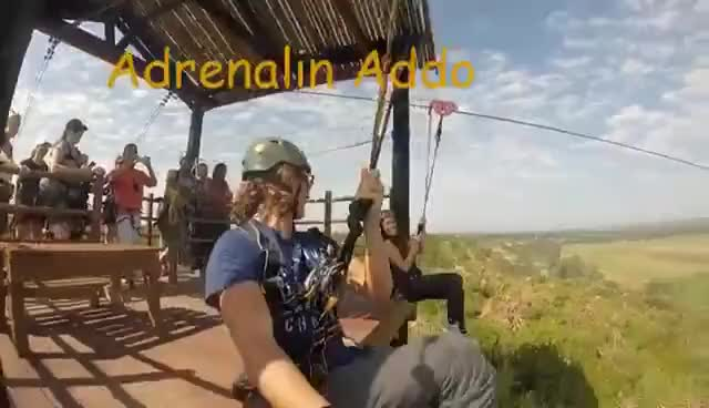 Watch and share Adrenalin Addo Zip Line GIFs on Gfycat