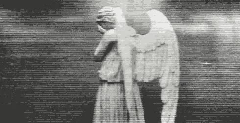 Watch angel GIF by Aaron Outram (@stormcastle) on Gfycat. Discover more doctor who, stormcastle, weeping angels GIFs on Gfycat