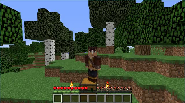 Watch 2D Minecraft GIF on Gfycat. Discover more related GIFs on Gfycat