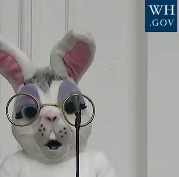 Watch this trending GIF by The GIF Forge (@leahstark) on Gfycat. Discover more GIF Brewery, president-trump-participates-in-the-white-house-easter-egg-r GIFs on Gfycat